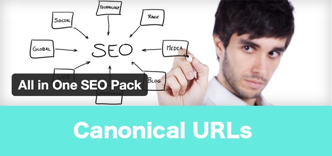 wordpress canonical URL all in one seo pack